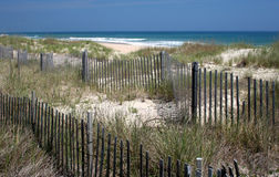 Beach Dunes. Dunes and Fence on Beach on Outer Banks Stock Photos