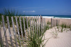 Beach Dunes. Dunes and Fence on Beach on Outer Banks royalty free stock images