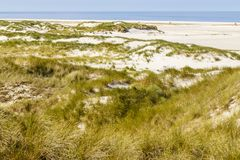Beach with dunes on Amrum, Germany Stock Photo