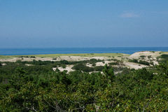 Beach. Dunes and beaches of Cape Cod royalty free stock image