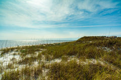 Beach Dunes Royalty Free Stock Images
