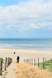 Beach and dunes on Dutch Texel Royalty Free Stock Photos