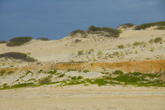 Beach and dunes. For holliday Royalty Free Stock Photos