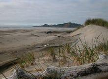 Beach Dunes - Oregon Royalty Free Stock Photography