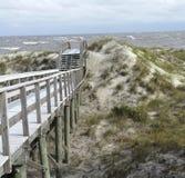 Beach Dunes Overlook Jekyll Island Georgia Royalty Free Stock Images