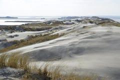 Beach and dunes Terschelling Stock Photos