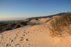 Beach Dunes Royalty Free Stock Photos