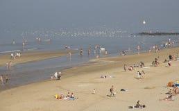 Beach on the Dutch coast Stock Images