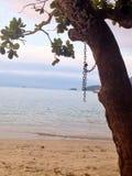 The Beach. Day on the beach. Ilha Grande, Brazil stock photo