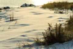 Beach early morning snow Stock Photos