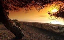Beach in eastern coast of  Corsica Stock Photo