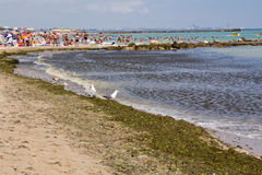 Beach of Eforie South Stock Image