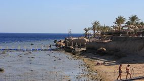 Beach in Egypt. People on pontoon bridge over coral reef on the beach in Sharm El Sheikh, Egypt stock video