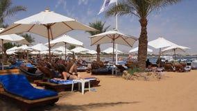 Beach in Egypt stock video