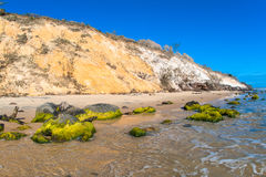 Beach Embankment Colors. The colors of contrast along the beach tidal shoreline at rainbow beach, The foreground rocks covered with green sea weed and the steep Royalty Free Stock Images