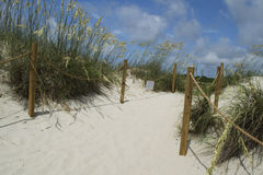 Beach Entrance Bald Head Island, North Carolina, USA Royalty Free Stock Images