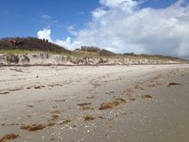 Beach Erosion stock photography