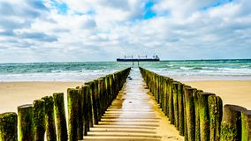 Beach erosion protection with a Large Ocean Freighter coming from the North Sea in the background and heading Vlissingen harbor royalty free stock image