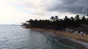 Beach in the evening. The sea, palm trees, sand, people far away stock video