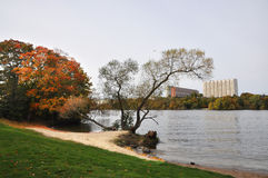 Beach in the fall. Deserted beach in the fall on one of the islands of Stockholm Stock Image