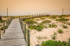 Beach of Faro, Algarve, Portugal Royalty Free Stock Photos