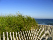 Beach Fence Stock Photography