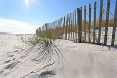 Free Beach Fence Royalty Free Stock Image - 3714396