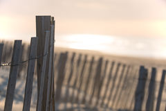Beach Fence at Dawn royalty free stock images