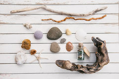 Free Beach Finds Stock Photos - 35101453