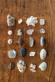 Beach finds Stock Image