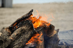 Beach Fire Stock Photography