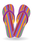 Beach flip flops vector illustration Stock Image