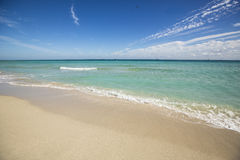 Beach in Florida, USA. Stock Image