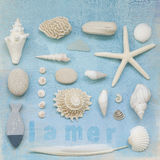 Beach flotsam collage Royalty Free Stock Image
