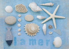 Beach flotsam collage Royalty Free Stock Photos