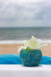 Beach Flower Royalty Free Stock Photo