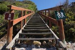 Beach foot path Stock Photos