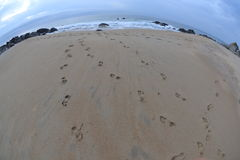 Beach foot prints/foot steps, Fisheye Stock Photography