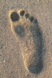 Beach Footprint Royalty Free Stock Images