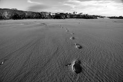 Beach footprints. Footprints leading away from the coast Royalty Free Stock Photography