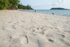 beach footprints Royaltyfri Fotografi