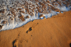 Beach. Footprints on a beach shore Royalty Free Stock Photography