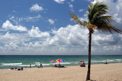 Beach in Fort Lauderdale. Florida Royalty Free Stock Image