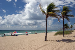 Beach in Fort Lauderdale. Florida Stock Photos