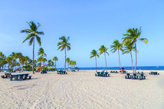 Beach in Fort Lauderdale Stock Image