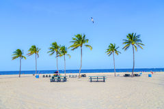 Beach in Fort Lauderdale stock images
