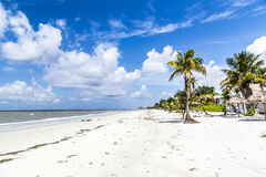Beach at Fort Myers in america royalty free stock images