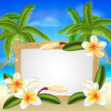 Beach frangipani beach summer sign. Beach floral frangipani plumeria flower beach palm tree summer tropical holiday background sign Royalty Free Stock Photo