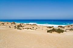 Beach in Fuerteventura Stock Photos