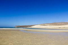 Beach in Fuerteventura Royalty Free Stock Photos